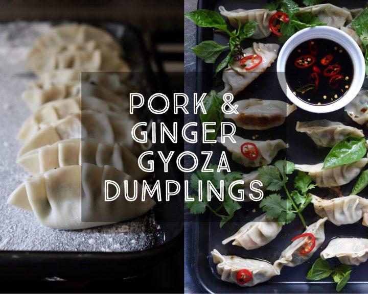 Pork and Ginger Gyoza Dumplings